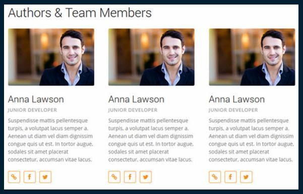 CPO Shortcodes-team-members