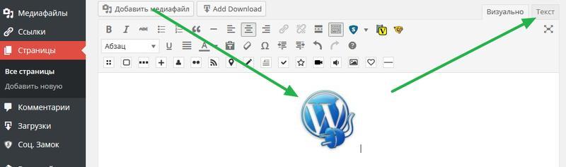 Как вставить картинку в виджет WordPress? Переходим в тектовый редактор.