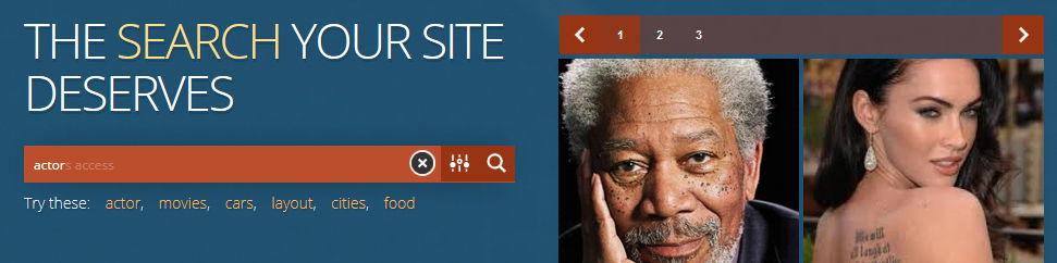 Ищем с Ajax Search Lite и Pro