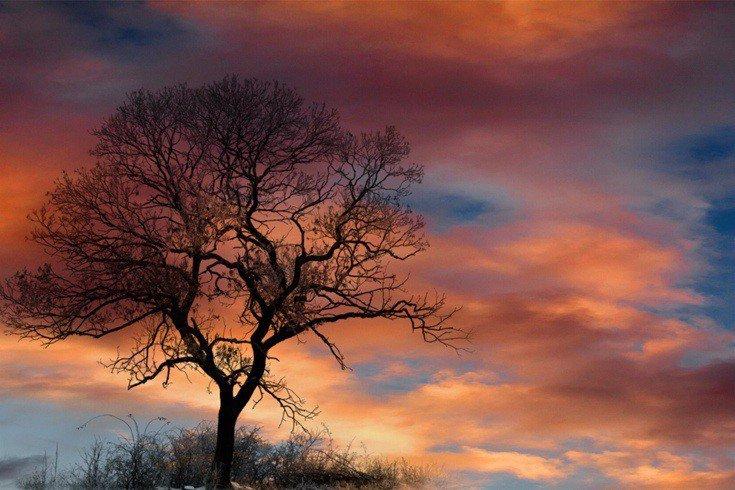 Тонкие градиенты и динамичная цветовая гамма хорошо видны в формате JPEG