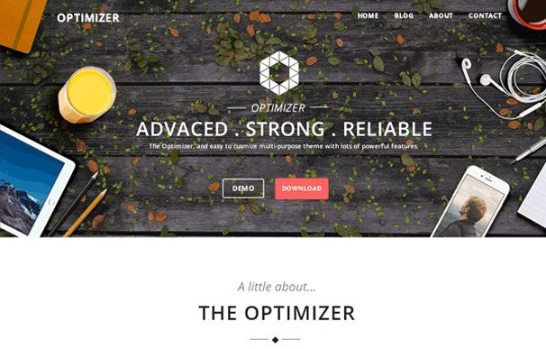Optimizer