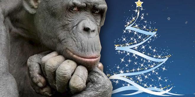 Опять Новый Год и Рождество - чем же порадовать читателей?