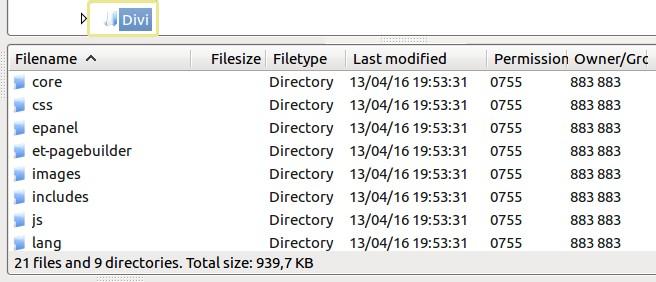 Divi также имеет отдельные папки для css, картинок и js темы