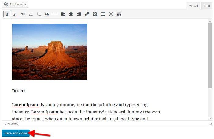 Visual Text Editor