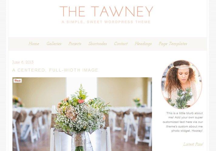 tawney-feminine-wordpress-theme_1