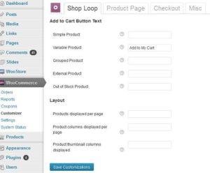 customizer-plugin-demo