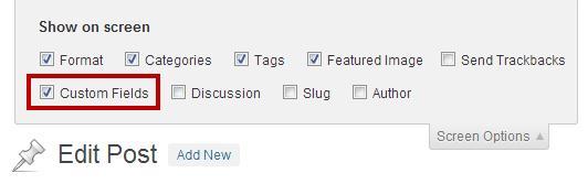 Custom fields - произвольные поля WordPress
