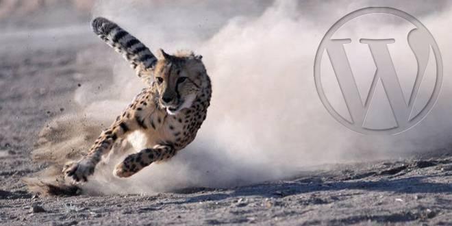 WP-Speed