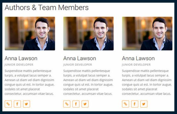 CPO Shortcodes-team-members