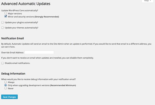 Disable Automatic WordPress Updates 1