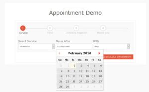 Booking Ultra Pro Appointments Plugin