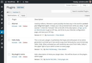 Create a WordPress Plugin 1