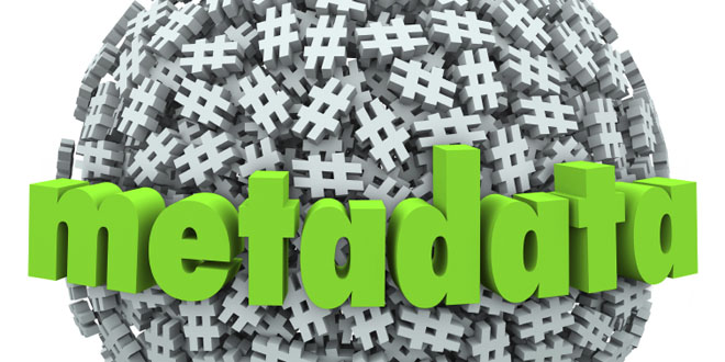 WordPress Metadata