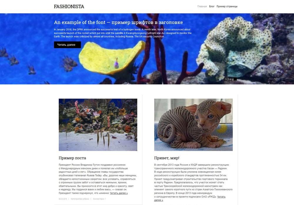 Премиум тема Fashionista от WP-PUZZLE