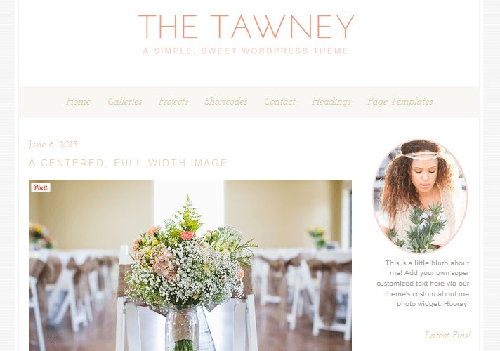 tawney-feminine-wordpress-theme_1
