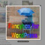 Fancybox for WordPress - красиво выводим изображения