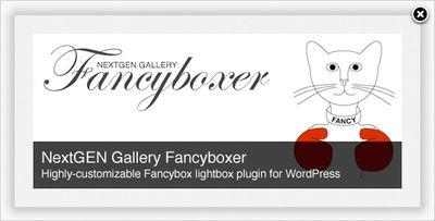 Fancyboxer