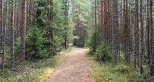 Karelia-2013-17-620x330