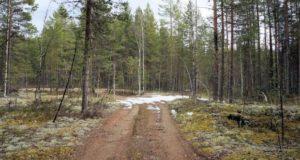 Karelia-2013-21-620x330